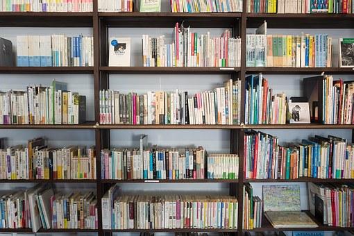 books-1245744__340